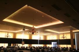 FibreLED (rotal marine covin ball room 010.jpg)